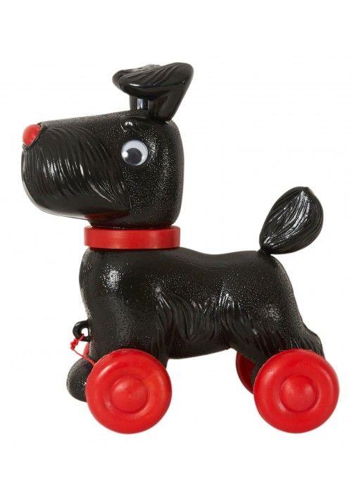 Eb & Vloed Hond Rex