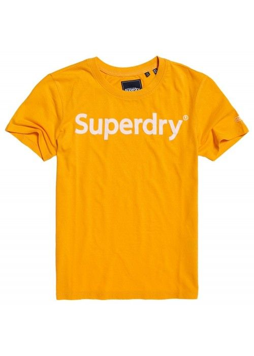 Superdry Reg Flock Entry Tee